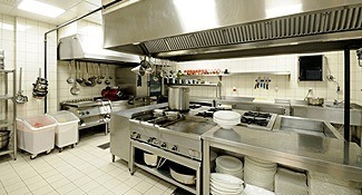 Commercial pest control for kitchens and restaurants